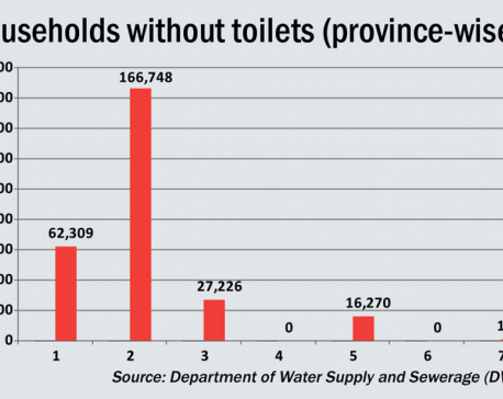 273,703 households nationwide don't have a toilet