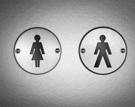 The toilet revolution