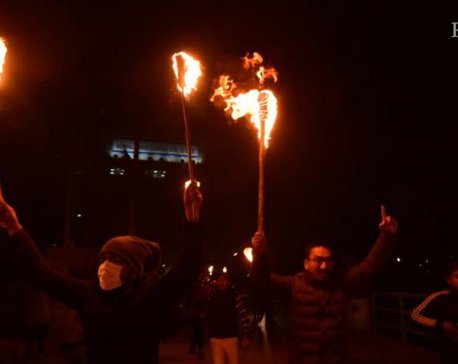 Torch-lit march against 'unconstitutional' House dissolution (with photos)