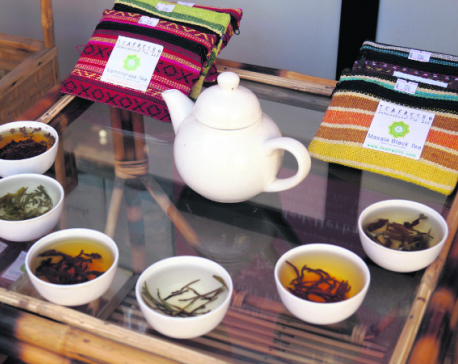 Teafresho to open tea lounge in New York