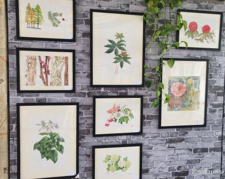 Neera's work on display at Wuhan Botanical Garden