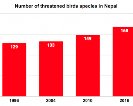 Nepal sees a massive increase in threatened birds species