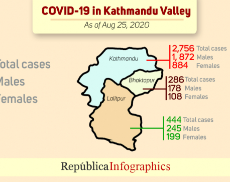 COVID-19 cases in Kathmandu Valley keep on soaring; 232 cases on Tuesday alone