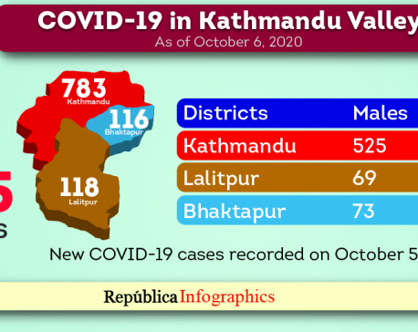 Kathmandu Valley's COVID-19 case tally reaches 31,865 with 1,017 new cases in past 24 hours
