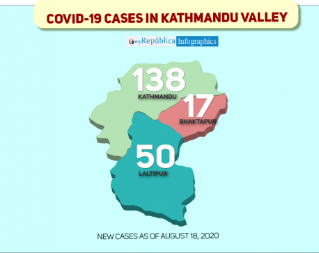 Kathmandu Valley sees highest single-day spike of 205 COVID-19 cases