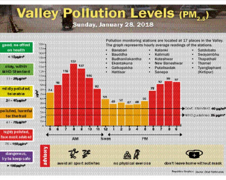 Valley Pollution Levels for 28 January, 2018