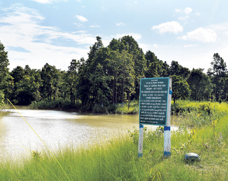 Wetland in Siraha gets attention