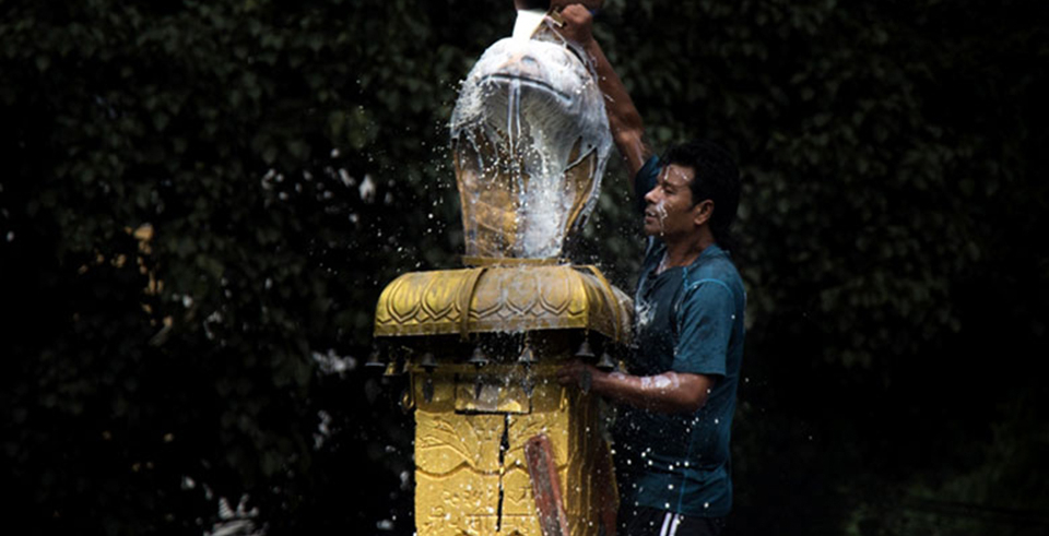 Naag Panchami being observed today (with video)