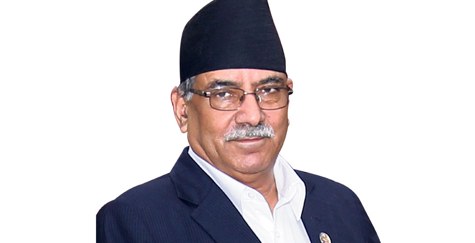 Shoe attack on NCP chairperson Dahal in capital (with video)