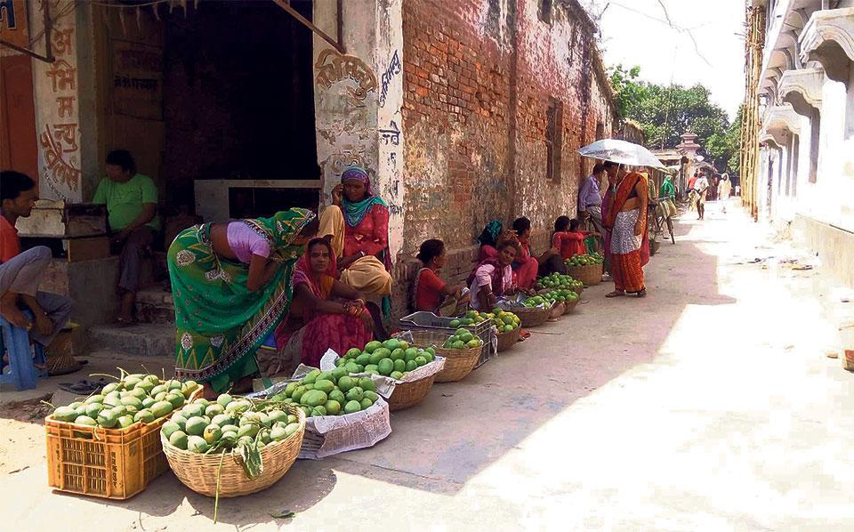Производство манго в Саптари должно удвоиться в этом году