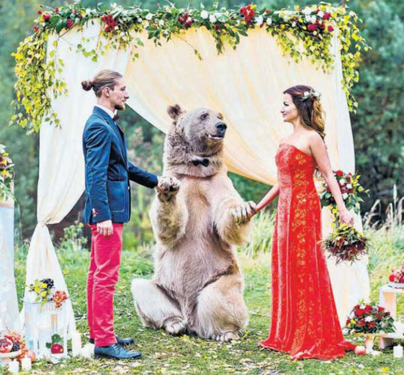 A bear acted as priest at bizarre wedding ceremony