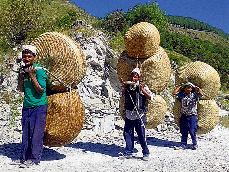 Plastic use threatens environment friendly bamboo items