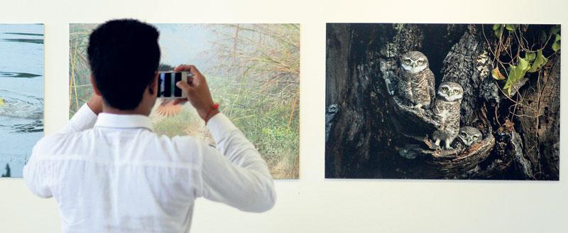 PJ Club photo exhibition in Nepal Art Council