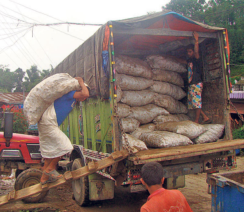 India puts a ban on ginger imports from Nepal