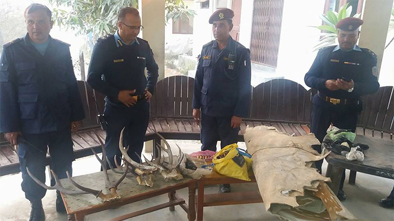Police confiscate weapons and wildlife parts from forest guard's house