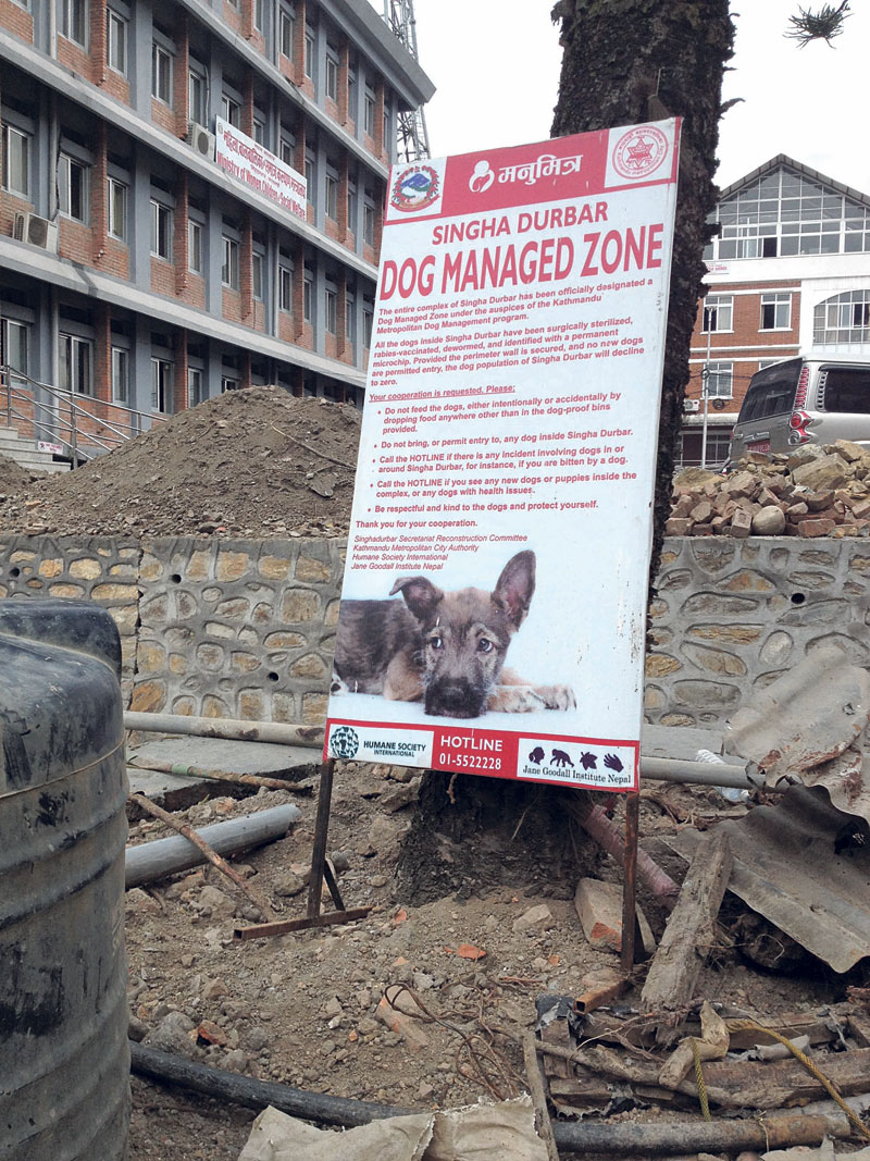 KMC becoming canine-friendly