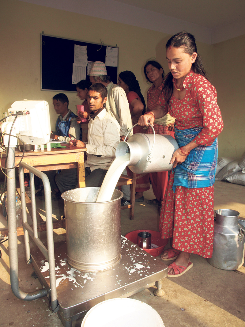 Kavre district declared self-sufficient in milk production