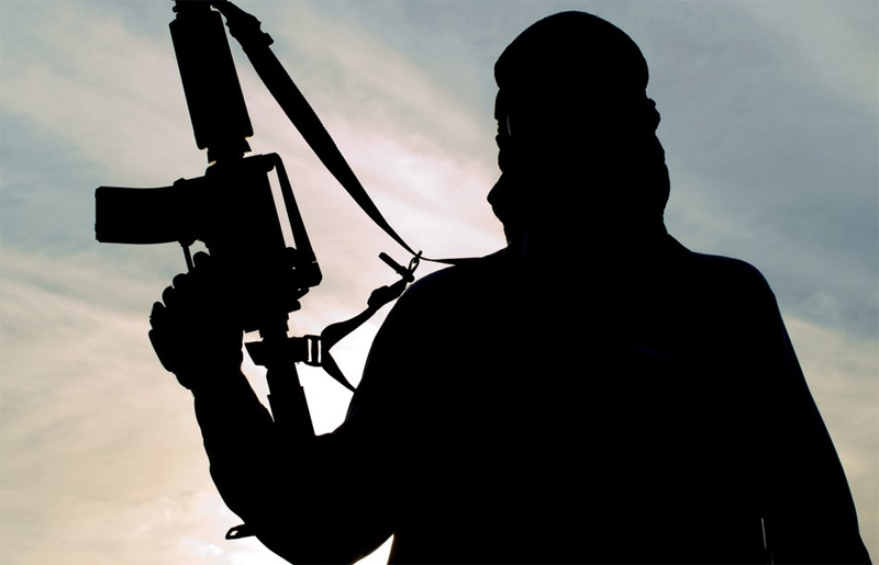 Security bodies exploring Islamic State's Nepal connection