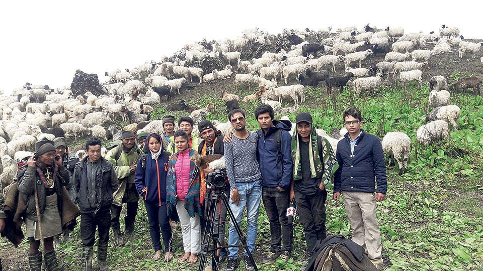 'Lilaram' amid herds of sheep