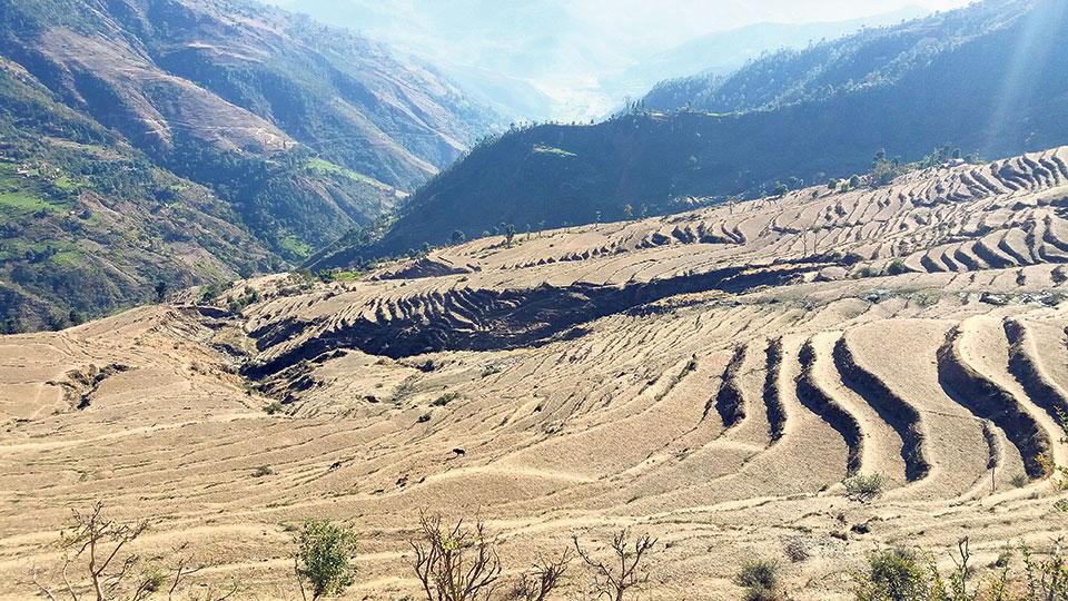 Agricultural lands lie fallow