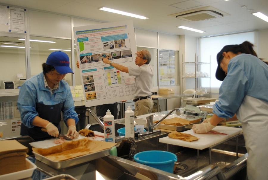 Made in Fukushima: Japan farmers struggle to win trust