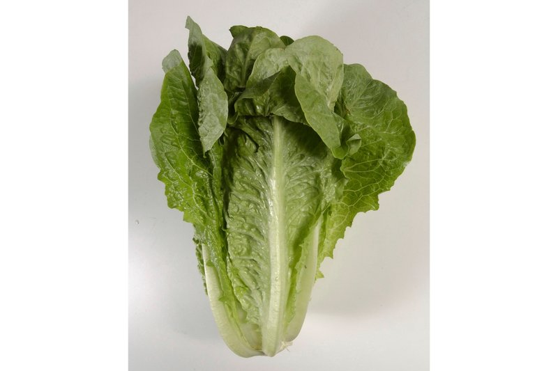 5 dead, nearly 200 sickened in romaine lettuce outbreak