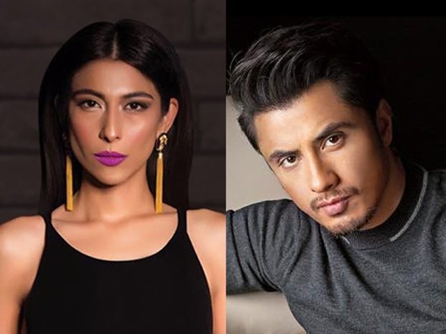 Ali Zafar files INR 1 bn defamation suit against actor Meesha Shafi