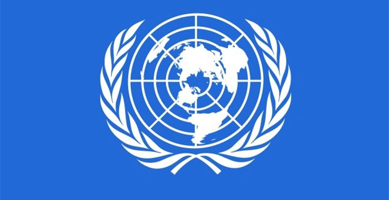 UN doing study on political issues without govt nod