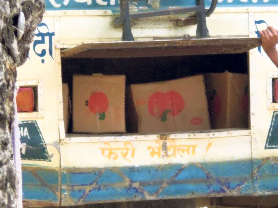 Chinese apple smuggling starts again in Siraha