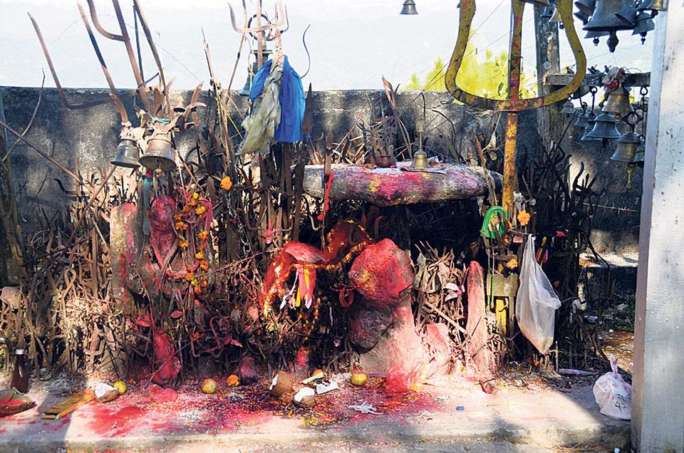 Panchthar shines for Trishali festival