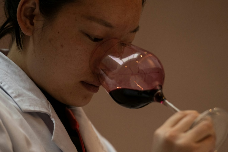 In China's Himalayas, a wine 'flying above the clouds'