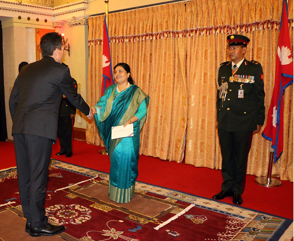 New French envoy presents credentials to president