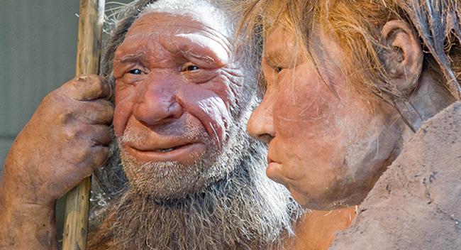 Neanderthal-like features in 450,000 yO Italian teeth shine light on evolution