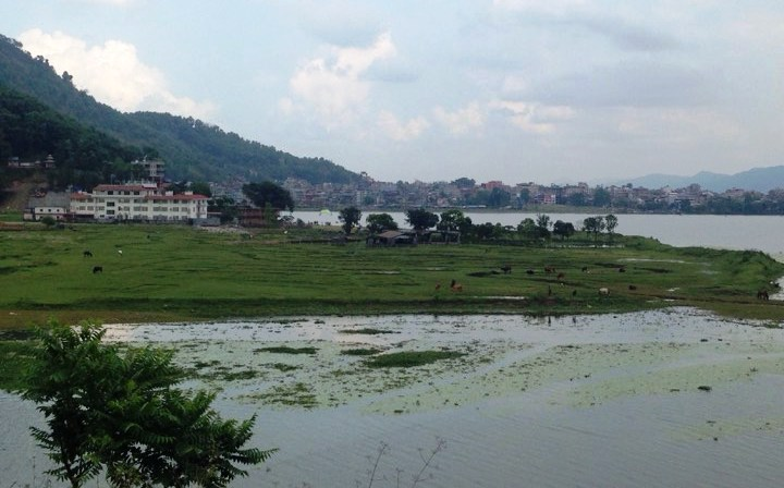 Panel to probe encroachment, pollution of Fewa by Shakya's resort
