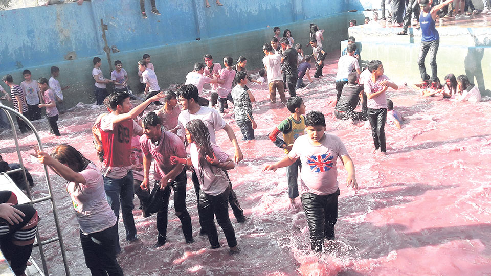 Holi celebrations in tarai (Photo Feature)