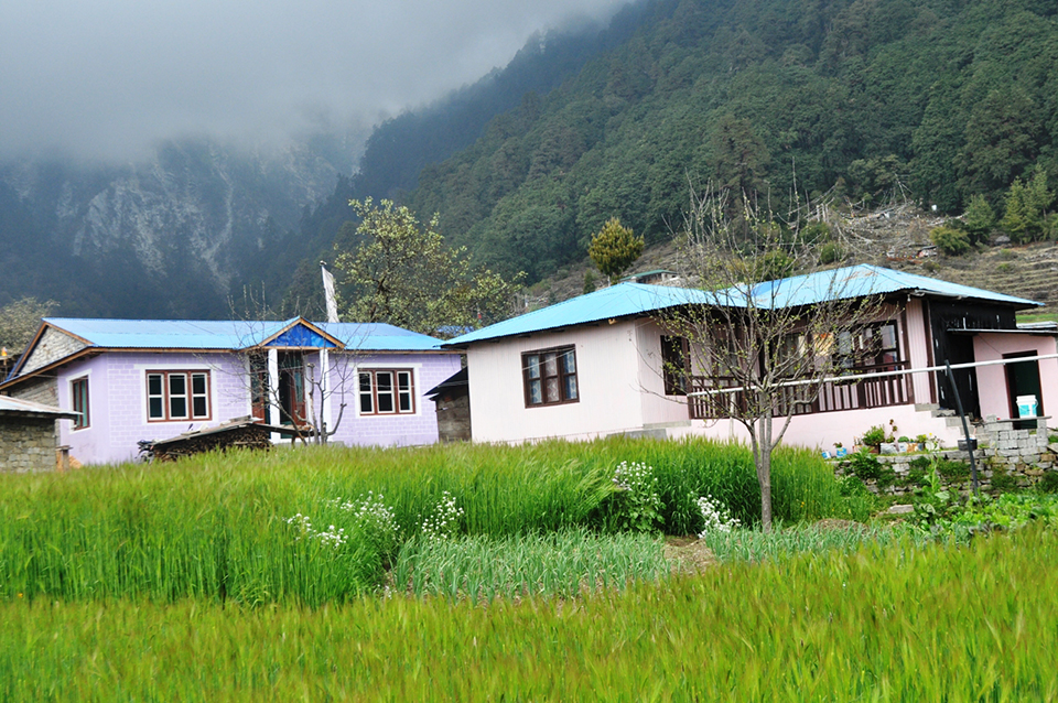 Tourism businesses thrive in quake-hit Melamchighyang