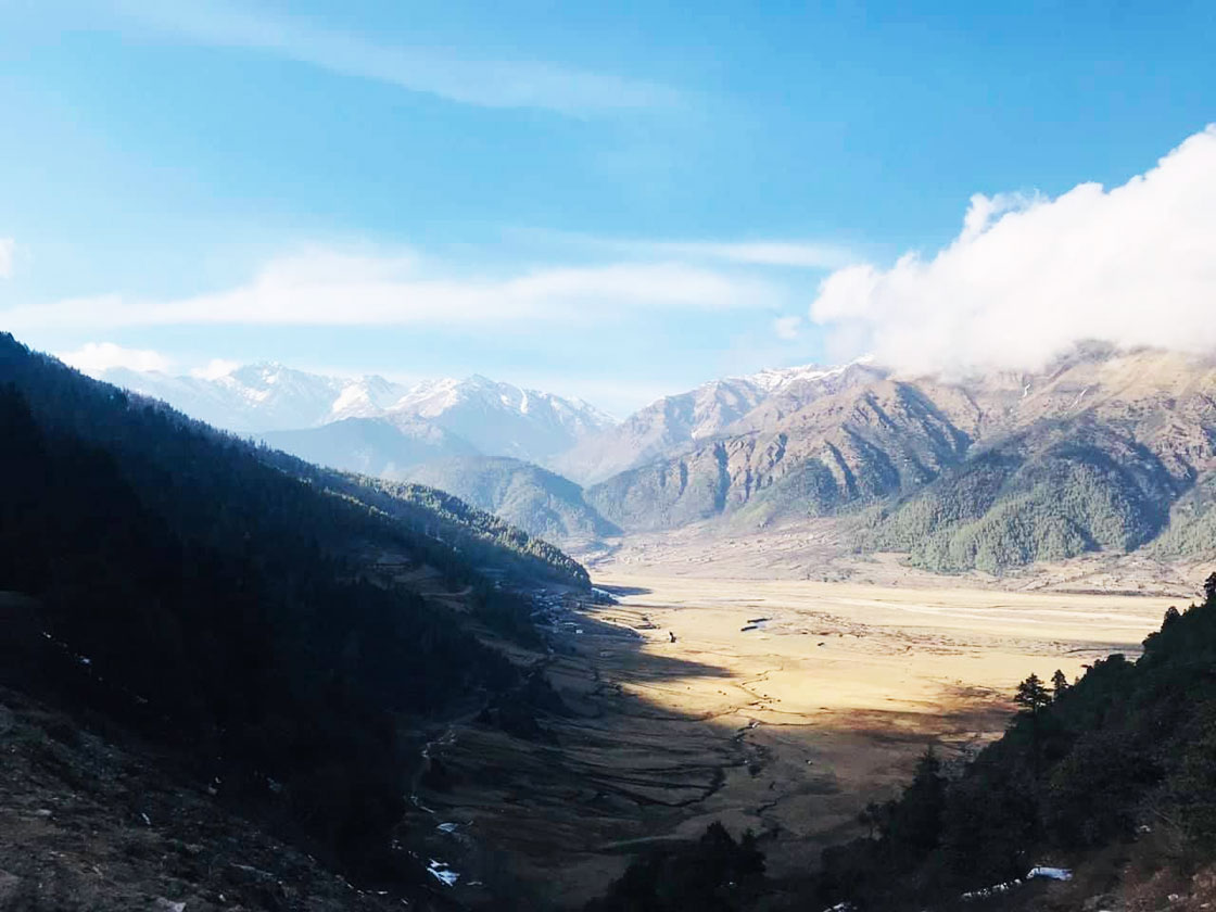 Six Himalayan bluesheep and three Himalayan Tahr killed in Dhorpatan