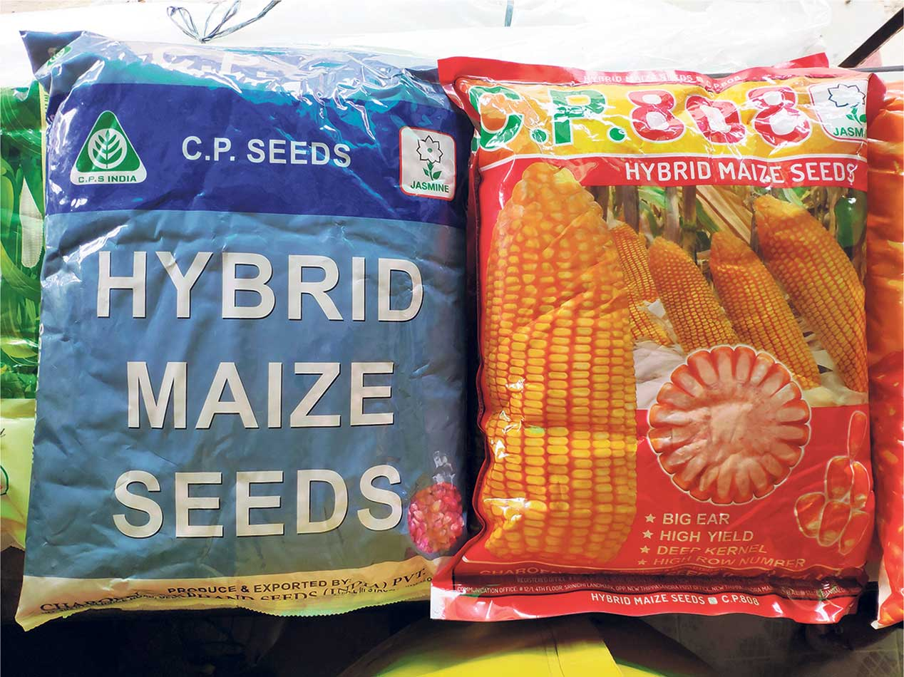 Seed importer charging different prices for same product: Farmers
