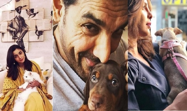 B-town shares adorable pictures with their pet on National Pet Day