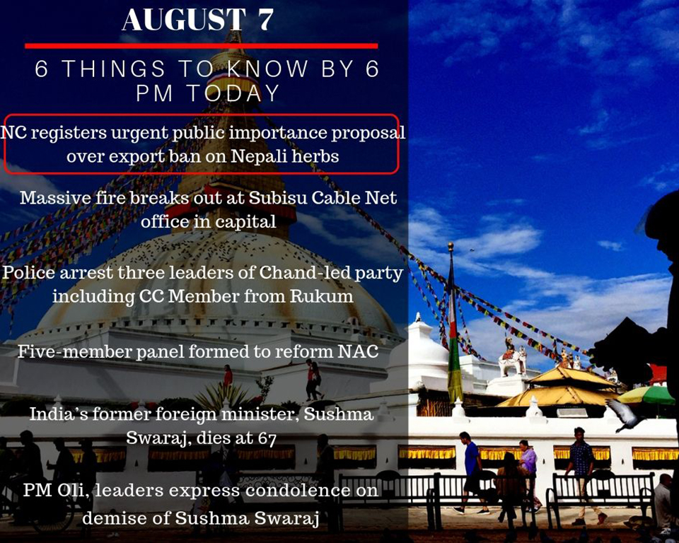 Aug 7: 6 things to know by 6 PM today