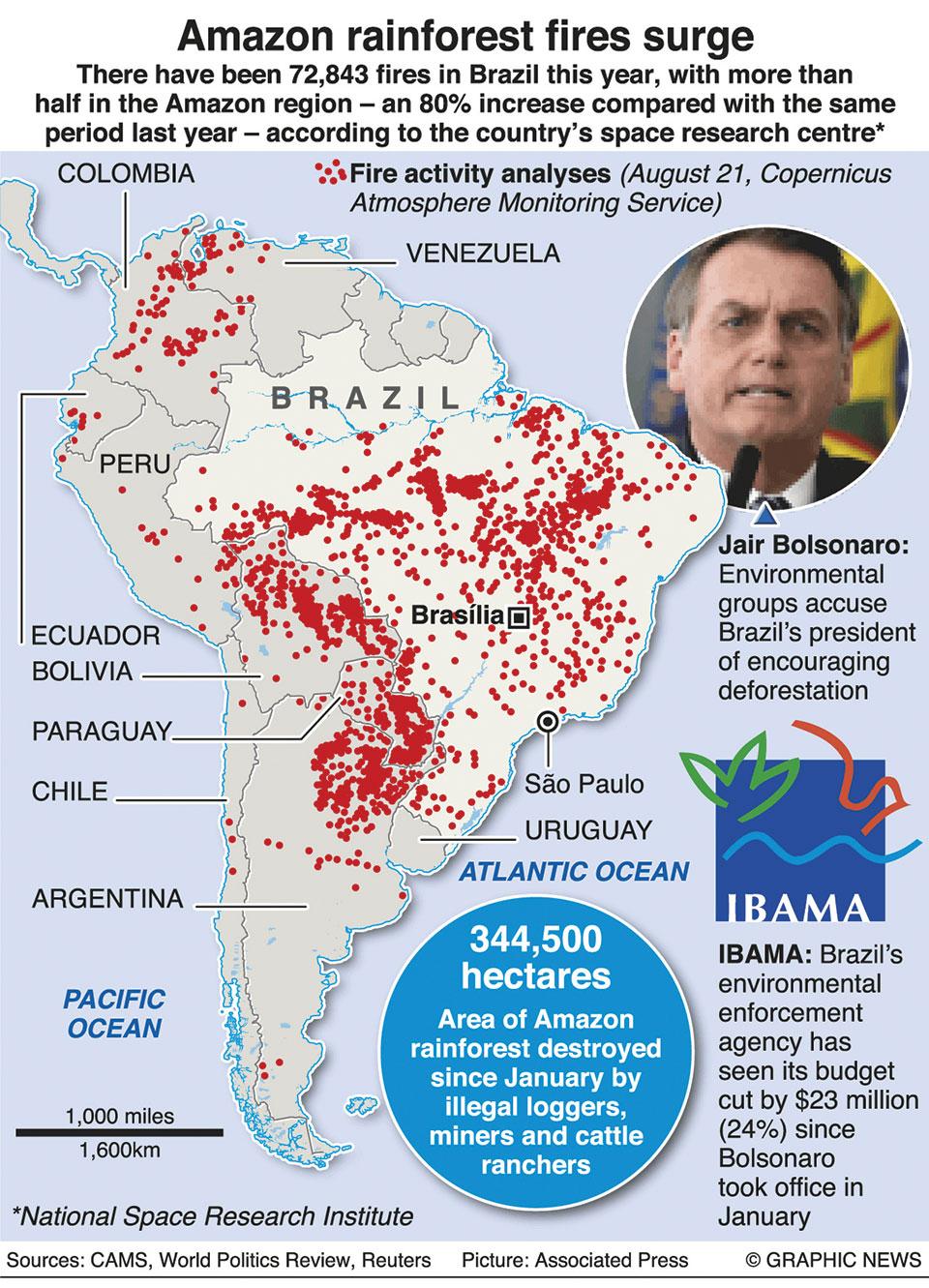 Infographics: Amazon rainforest fires