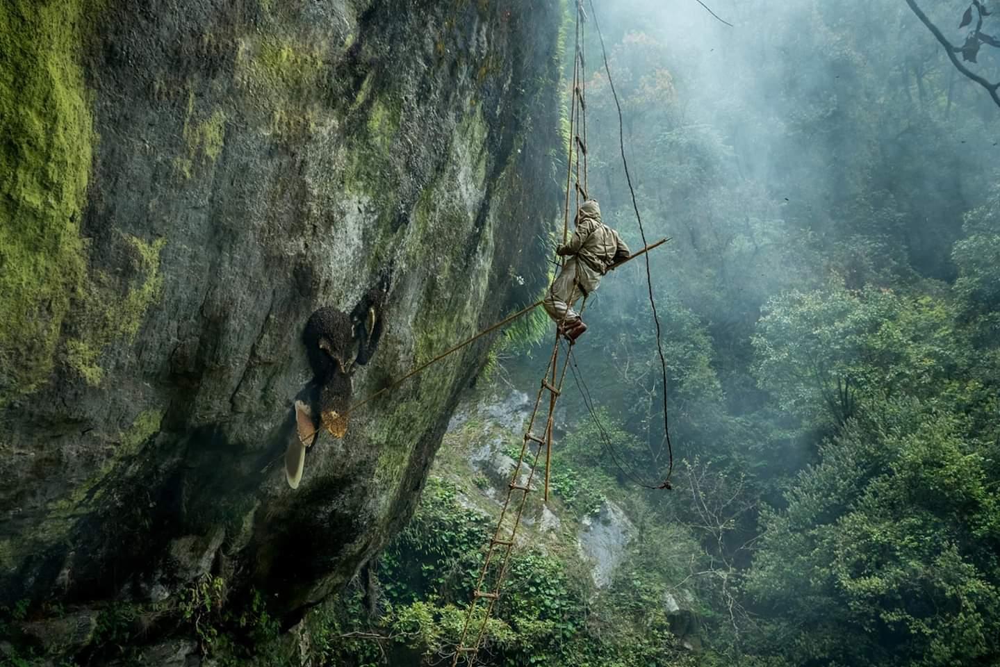 Dikpal Thapa's Photo bagged Sony World Photography National Awards 2019