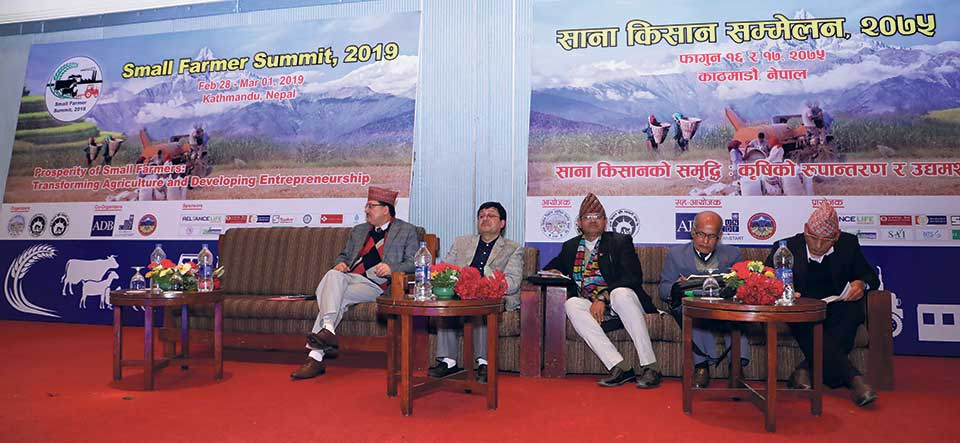 Small Farmers' Summit kicks off