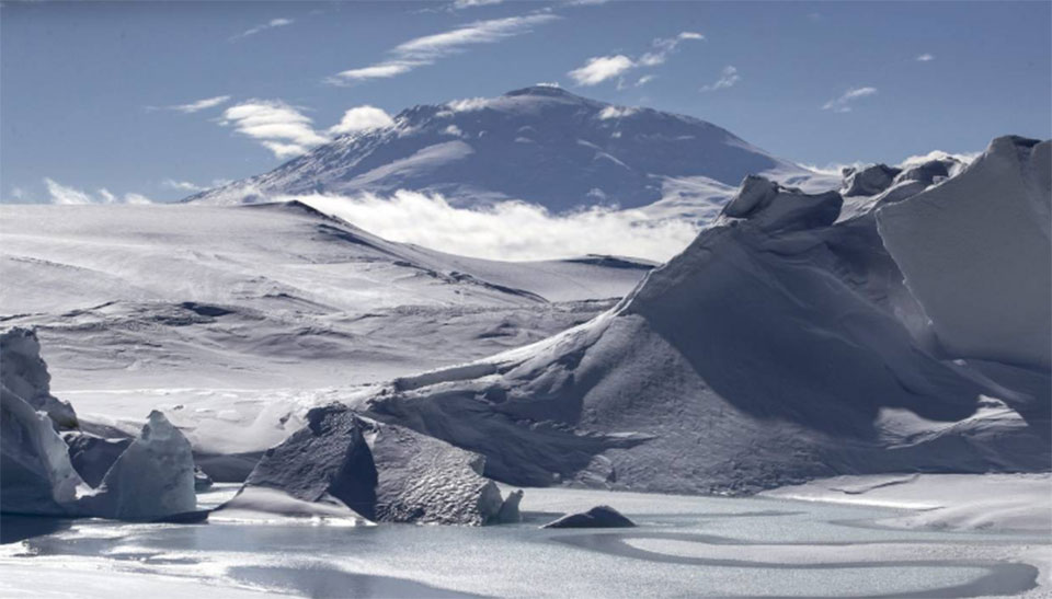 A dinosaur relative discovered in Antarctica sheds light on extinction