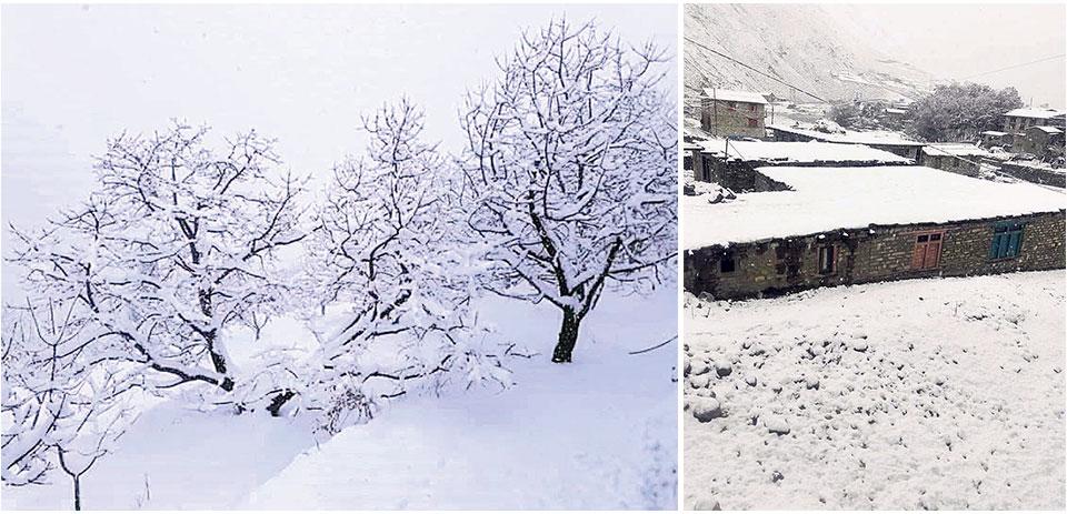 Heavy snowfall blankets Dolpa