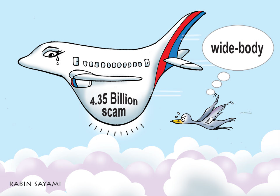 Govt forms judicial panel to probe aircraft scam
