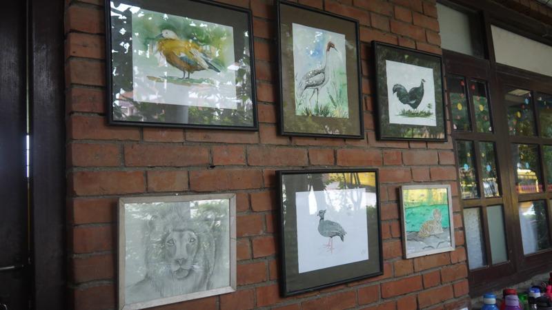 Bird exhibition in Bhaktapur