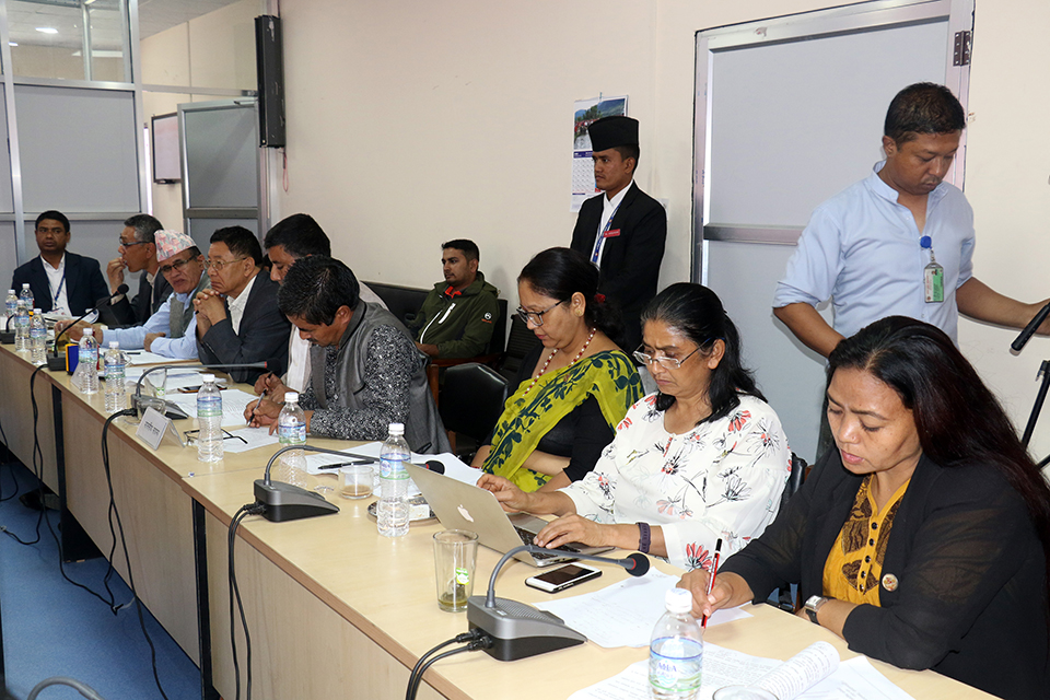 Parliamentary committee discusses advertisement regulation with experts
