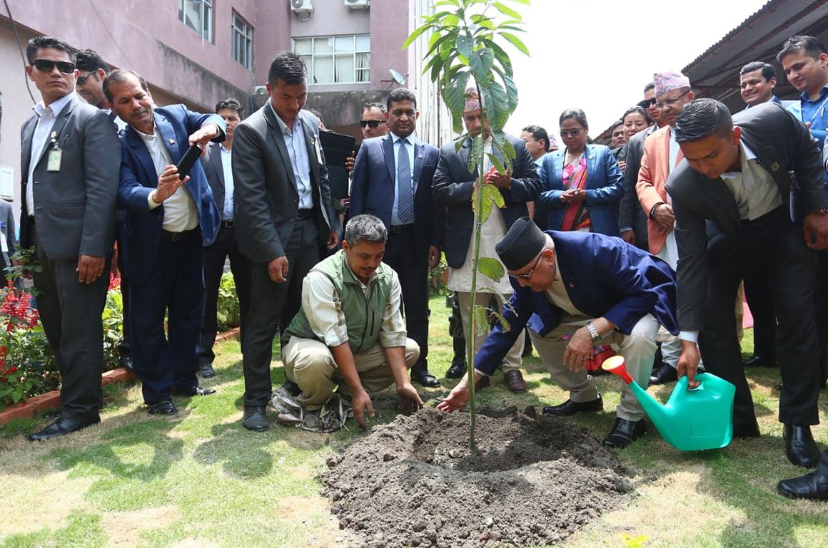 World Environment Day 2019 being observed today