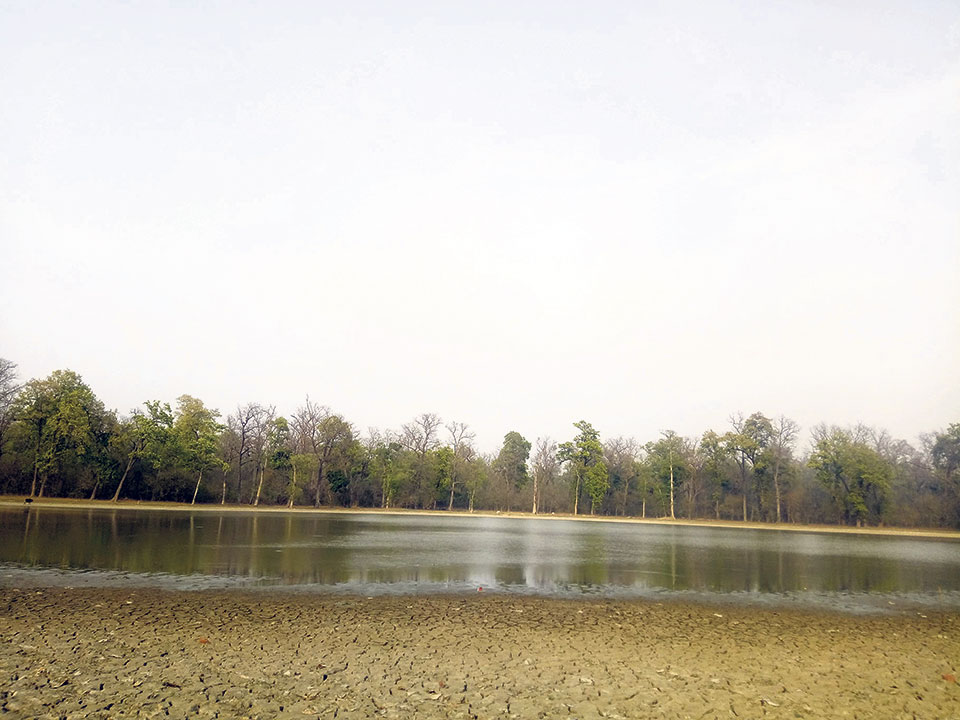 Kailali wetlands, lakes disappearing at an alarming rate